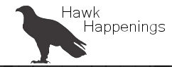 Hawk Happenings