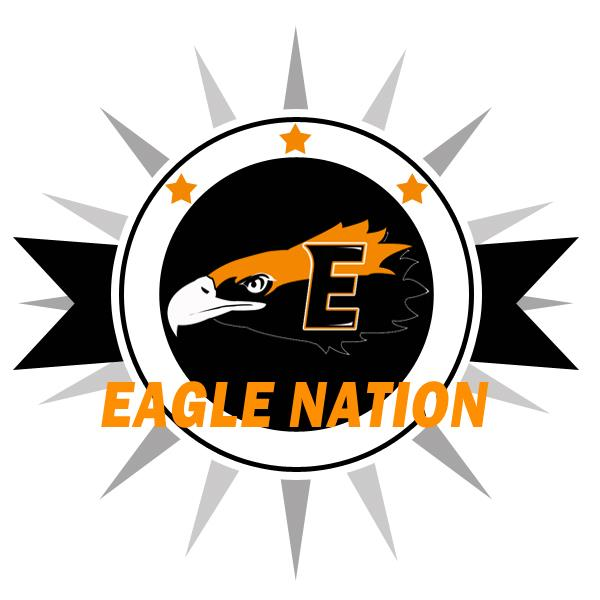 Eagle Logo with sun ray behind
